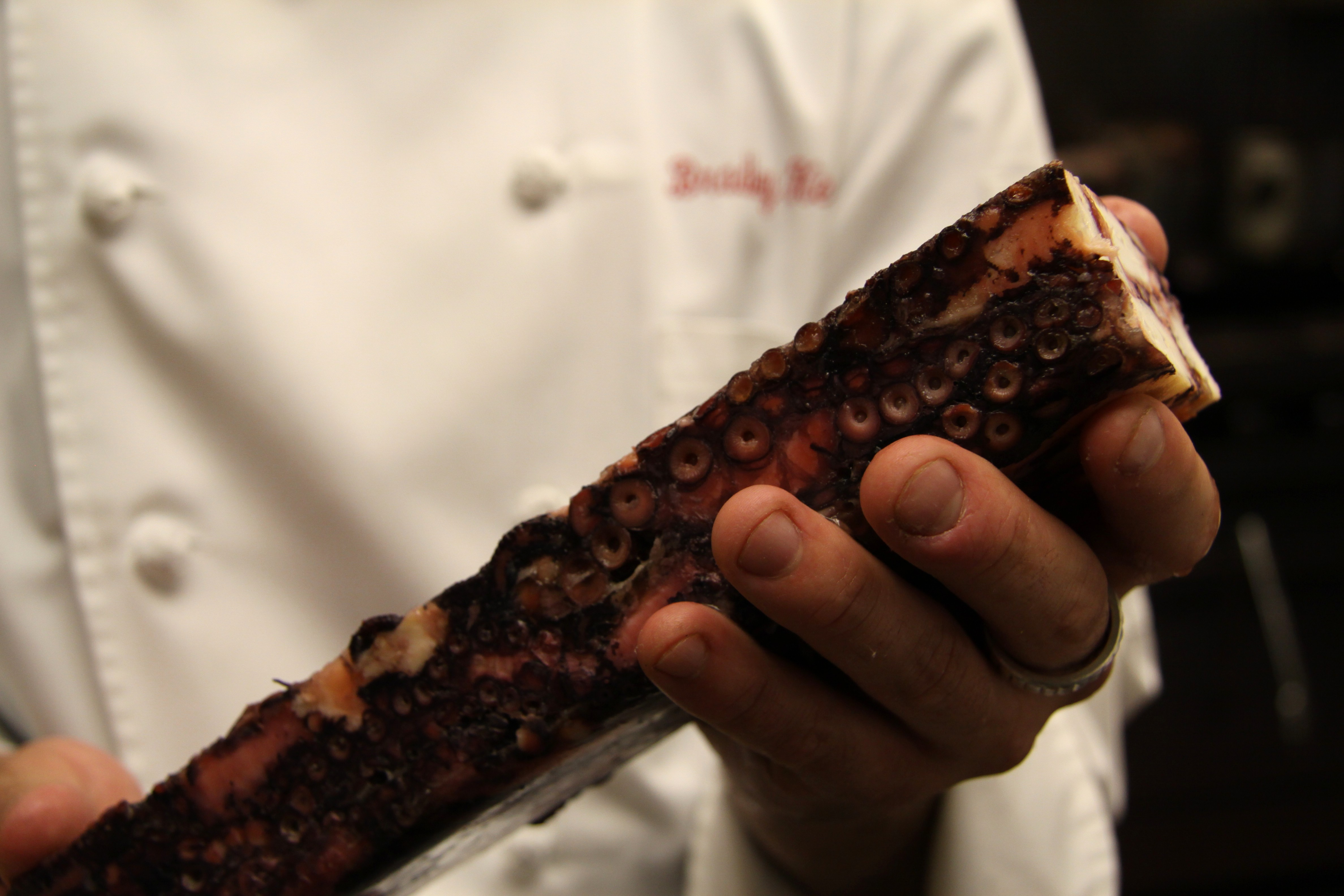 how to cook a terrine