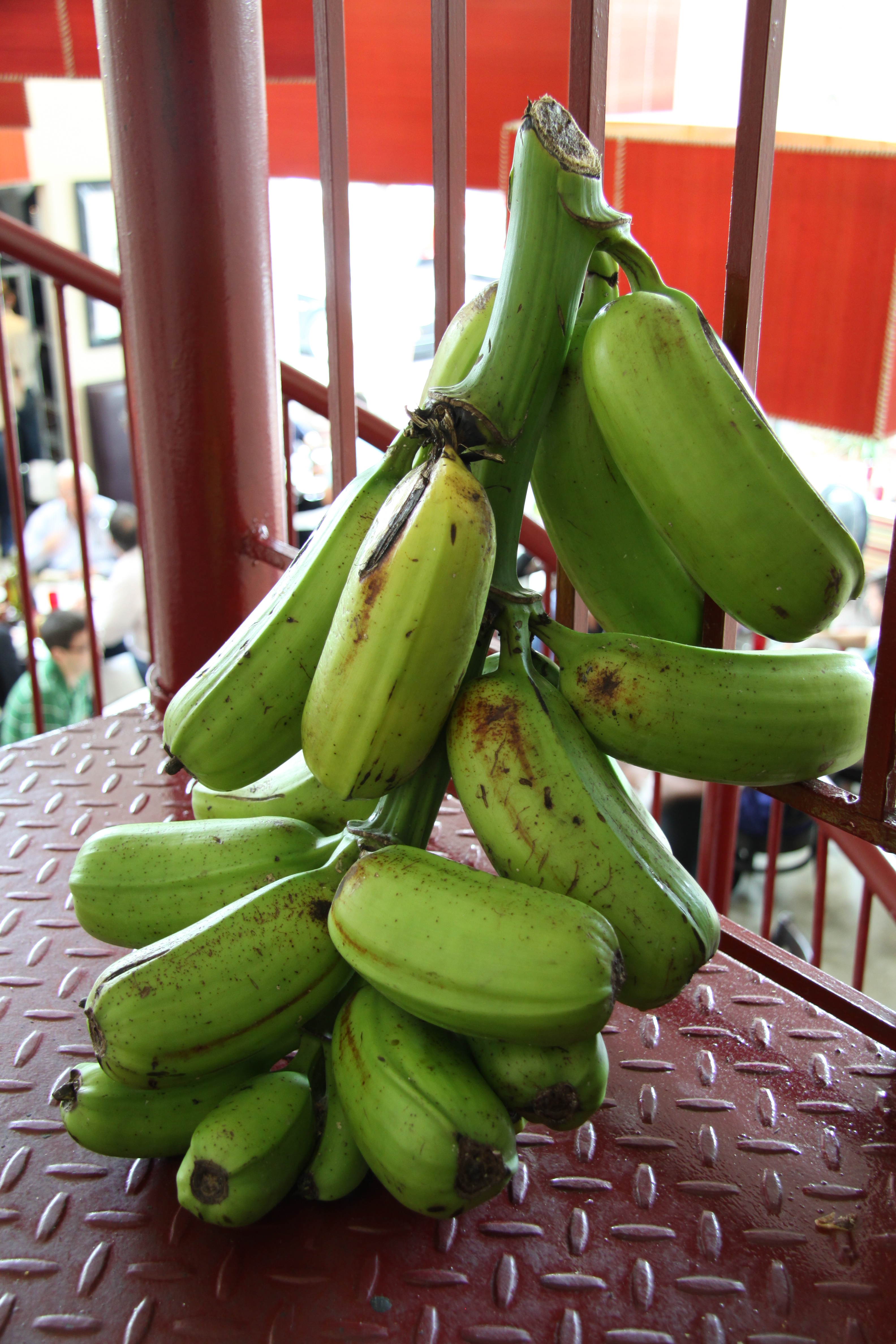 Unusual House Names Rare Hua Moa Banana Plantain In The House The Genuine