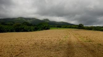Looking south, harvested cane fields with forested mountainous terrain..