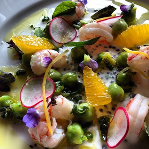 First course tasting tonight is a #beauty. Pickled shrimp, marinated green chickpea salad, shot by @nicoleterroir. @Ericlarkee pairs with Ameztoi, 2012 Hondarrabi Zuri, Getariako Txakolina @roel_alcudia @piginc 13 comments