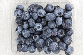 Blueberries from the walk-in