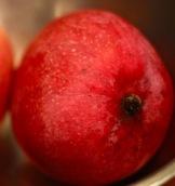 Valerie's Cherwin Mango at it's peak ripeness!