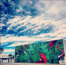 Beauty is everywhere (via @MiamiDesignDistrict Instagram)