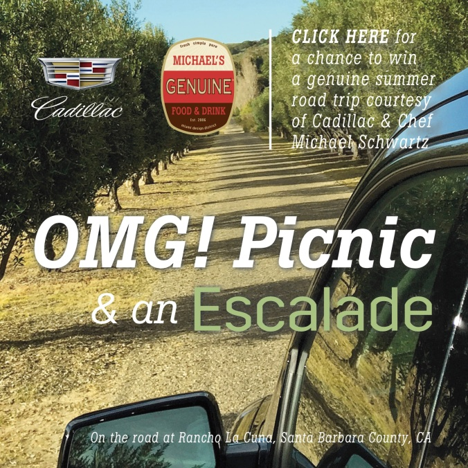 OMG_Picnic & an Escalade Square