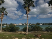 View of Baha Mar en route from the airport. Transfer is 10-15 minutes max.